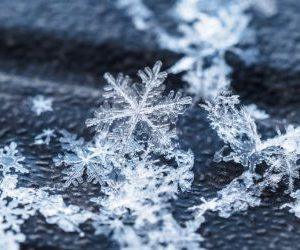 Žiemai
